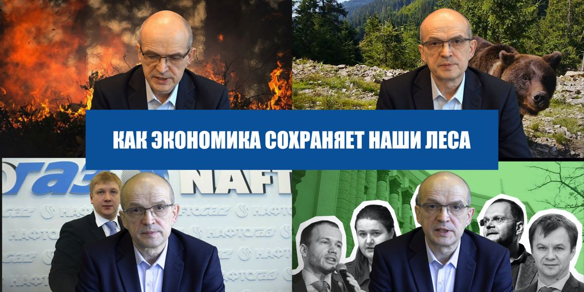 About the destruction of forests in Ukraine from the point of view of economic theory